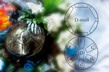 dmoll